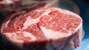 Белорусские производители мяса отправились за опытом и партнерами в США