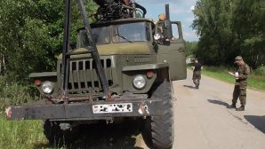 "На Могилевщине остановили грузовик с ""левым"" лесом"
