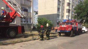 МЧС: Оставленная на плите пища стала причиной пожара в Бресте