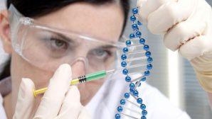 Белорусские генетики ищут «олимпийские гены»