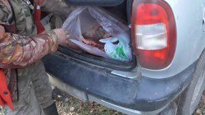 Не оправдал доверия: В Барановичском районе задержали браконьера, поставленного смотреть за порядком в охотхозяйстве