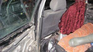В Пинском районе в машине у охотника-зайчатника нашли незаконно добытых бобра и косулю