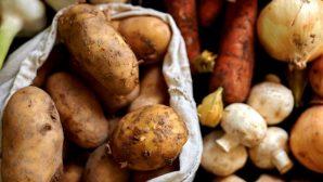 Беларусь в 2017 году существенно увеличила экспорт продовольствия