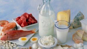 Ученые рассказали о рисках белковой диеты