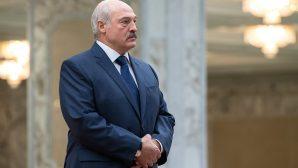 Александр Лукашенко вновь проведет встречу с общественностью