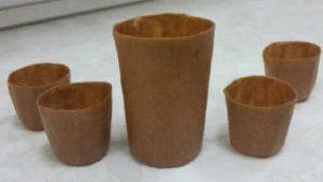 Самарские ученые создают съедобную посуду из яблок