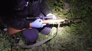 Подствольный фонарь, оптика, прибор ночного видения - на Могилевщине задержали браконьера