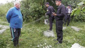 Житель Мозыря, придя проверить рыбацкие сети, был задержан госинспекторами
