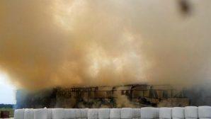 В Минской области пожар уничтожил 70 тонн сена
