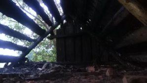 В Могилевской области молния ударила в баню