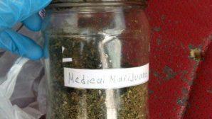 В Минской области задержали распространителей марихуаны