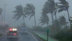 """Сенатор предложил жителям Флориды посмотреть """"Игру престолов"""", пока бушует ураган """"Ирма"""""""