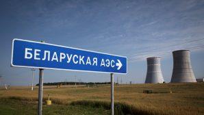 Литва намерена остановить строительство АЭС в Беларуси