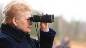 Президент Литвы: БелАЭС - угрожающий Европе геополитический проект РФ