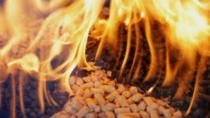 Беларусь наращивает использование древесных отходов при произодстве тепловой энергии