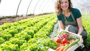 Саженцы, семена и луковицы с доставкой по Беларуси