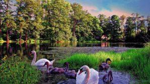 Беларусь возглавила ТОП стран СНГ по экскурсионной привлекательности среди российских туристов