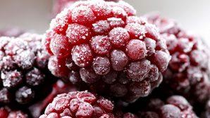 Малиной по диабету - ученые рассказали о малоизвестных свойствах известной ягоды