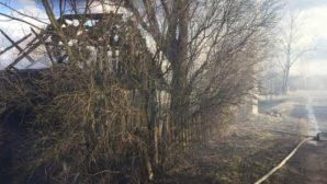 Чашникский район: от выжигания сухой травы пострадал дом