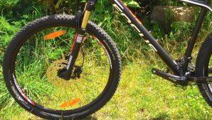 Пуховичский район: девочка поехала в лес на велосипеде и заблудилась