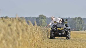 Александр Лукашенко рассказал, что выращивает на своем приусадебном участке